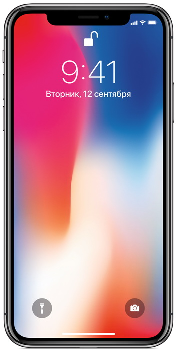 Apple iPhone X 64GB серый космос (MQAC2RU/A)